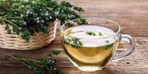 Read more about the article Kekik çayı nasıl yapılır